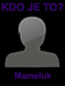 kdo je to Mameluk?